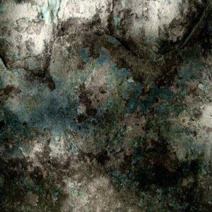 decay backdrops photo
