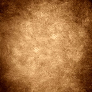 Rembrandt Brown backdrops photo