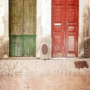 twin doors backdrops photo